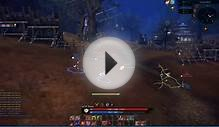 TERA Online - Archer + Mystic in Open World PvP [CBT2][HD]